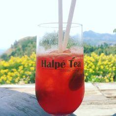 haple tea